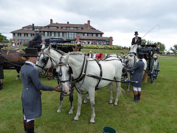 Carriage_line_up30