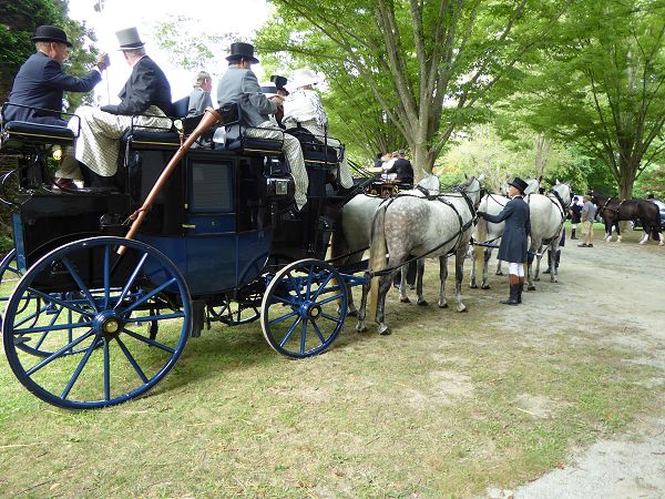 Driving_Carriage_Driving7