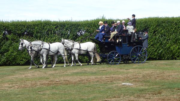 Driving_Carriage_side
