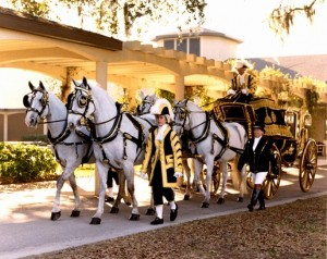 Armbruster Carriage being guided on the grounds of its home at the Florida Carriage Museum
