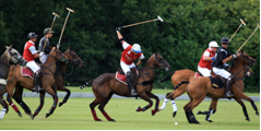 Polo before the Prince Phillip's birthday celebration